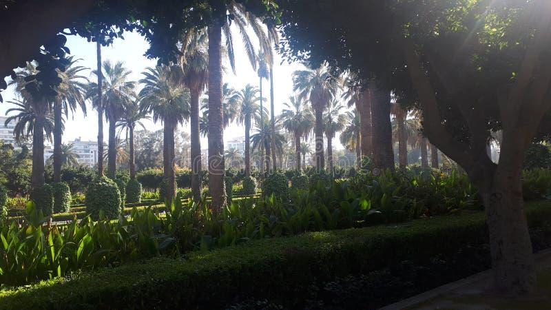 公园卡萨布兰卡 免版税库存照片