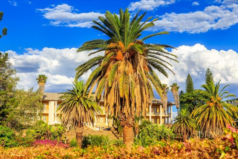 公园和庭院有在高棕榈后掩藏的黄色宫殿大厦的,温得和克,纳米比亚 免版税库存照片