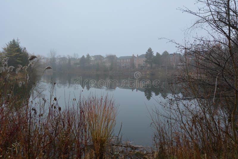 公园和湖在里士满希尔在多伦多在加拿大早晨在冬天 免版税库存图片