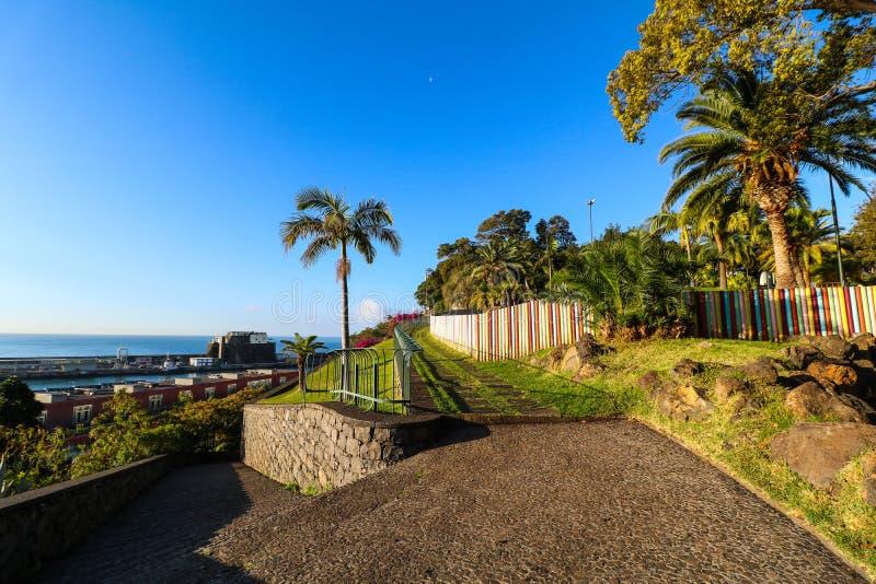 公园圣卡塔琳娜州,丰沙尔,马德拉岛 免版税图库摄影