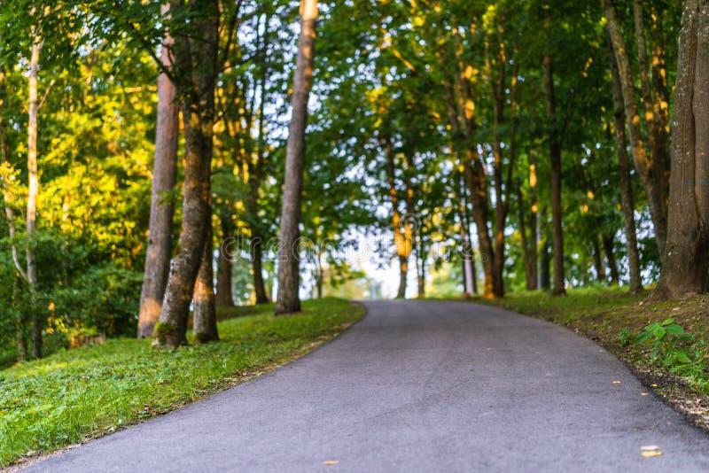 公园在一晴朗的秋天天-在它中间的人行道的五颜六色的照片 图库摄影