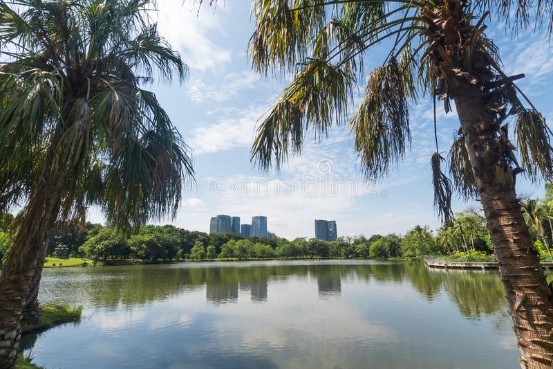 公园在大城市 地方和户外概念 自然和风景题材 曼谷泰国地点 免版税库存照片