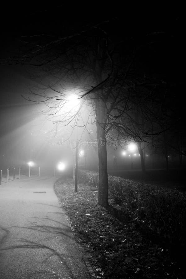 公园在有雾的夜 免版税库存图片
