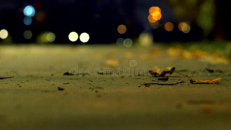公园在秋天黑暗的夜 单独人在边路走 从被弄脏的背景的看法 Helios透镜 库存图片