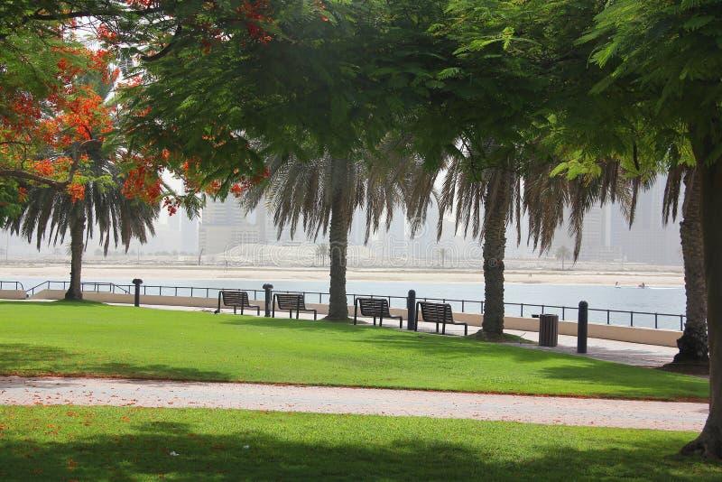 公园在迪拜 免版税库存图片