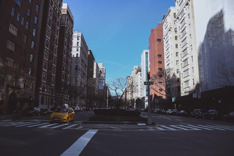 公园大道 免版税库存照片