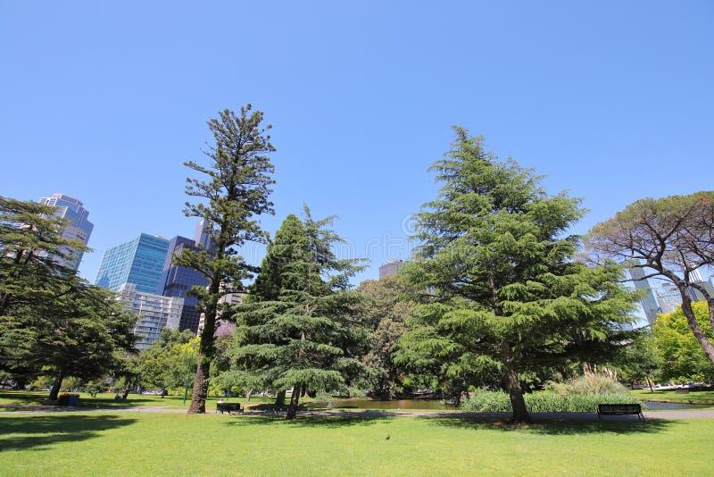 公园庭院墨尔本澳大利亚 免版税库存照片