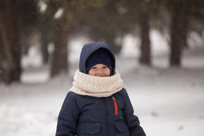 公园的愉快的小男孩冬天雪的 免版税库存图片