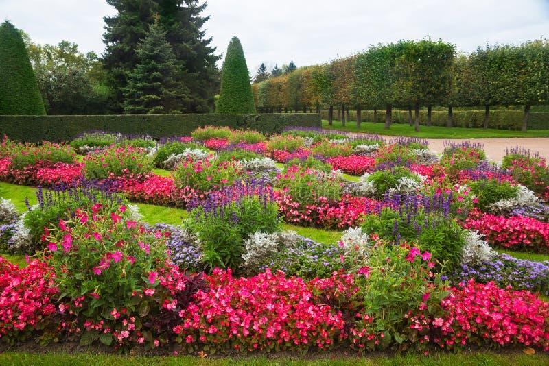公园的风景设计 免版税库存图片