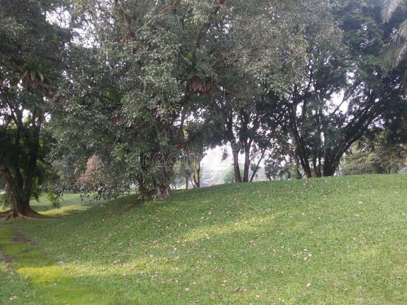 公园的风景路线 免版税库存图片