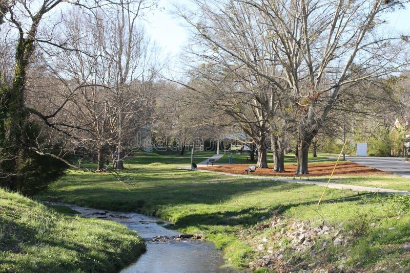 公园的,好春日一点河 免版税库存照片