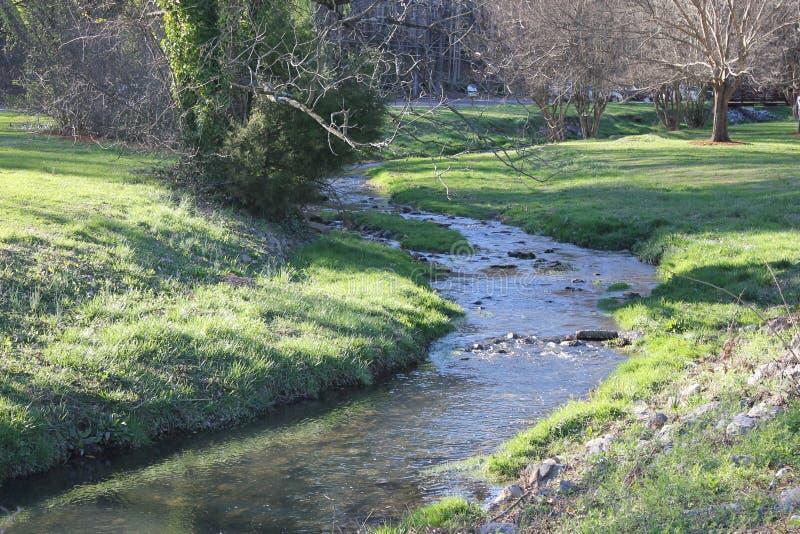 公园的,晴朗的春日一点河 库存照片