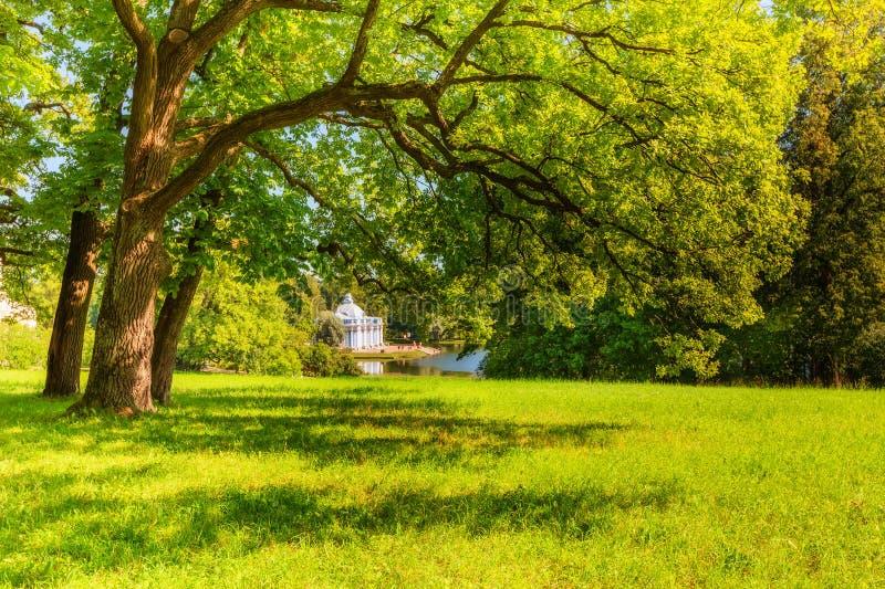 公园看法在普希金在夏日 库存照片