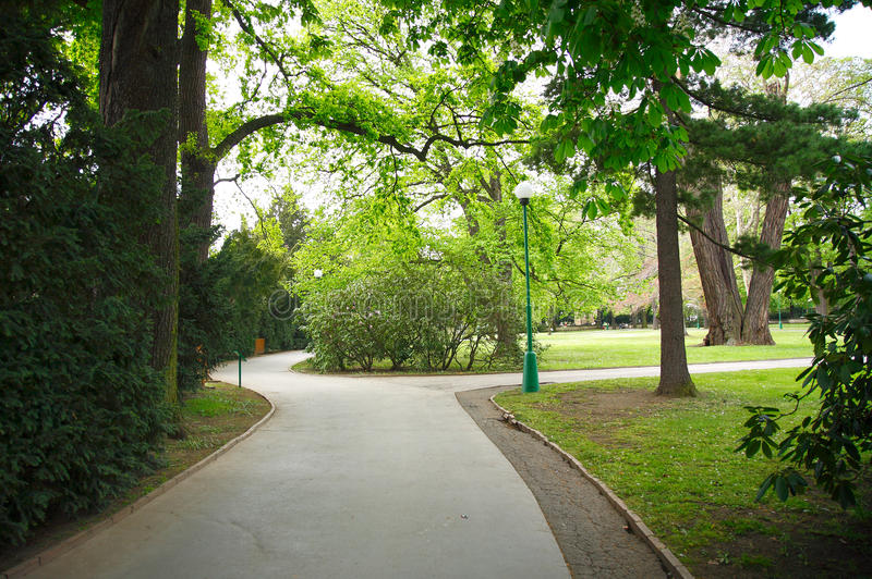公园路径 库存照片