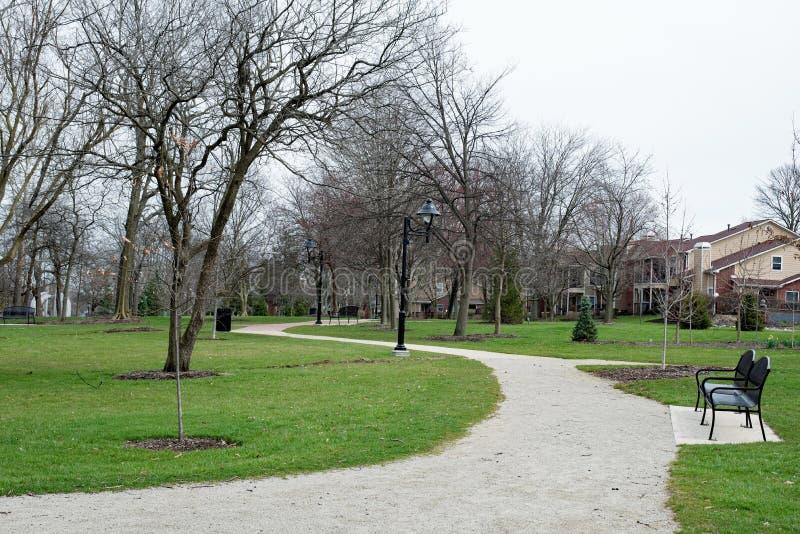 公园道路在早期的春天 库存照片