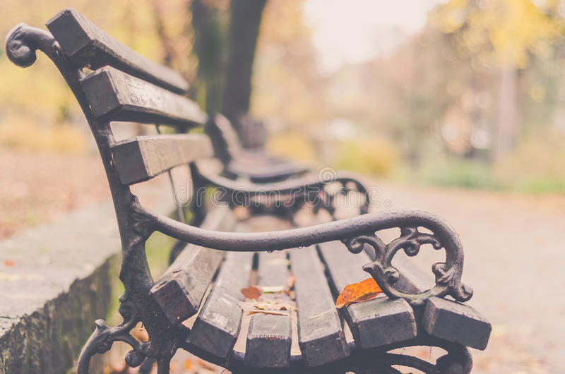 公园长椅在秋天上色光 免版税库存图片