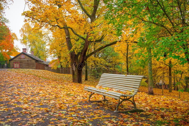 公园风景在10月 免版税库存照片
