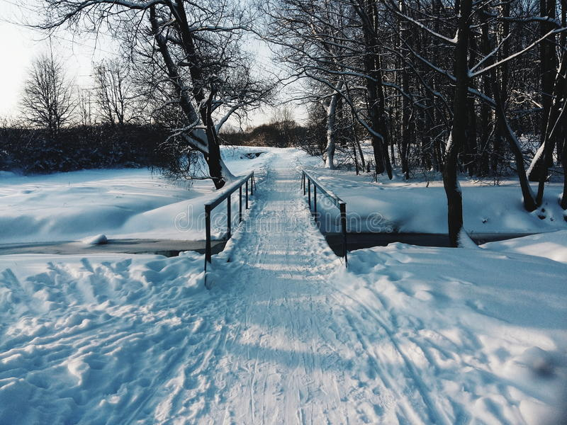 公园,雪桥梁 免版税图库摄影