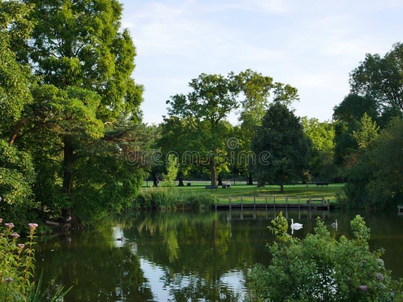 公园,绿色风景 免版税库存照片