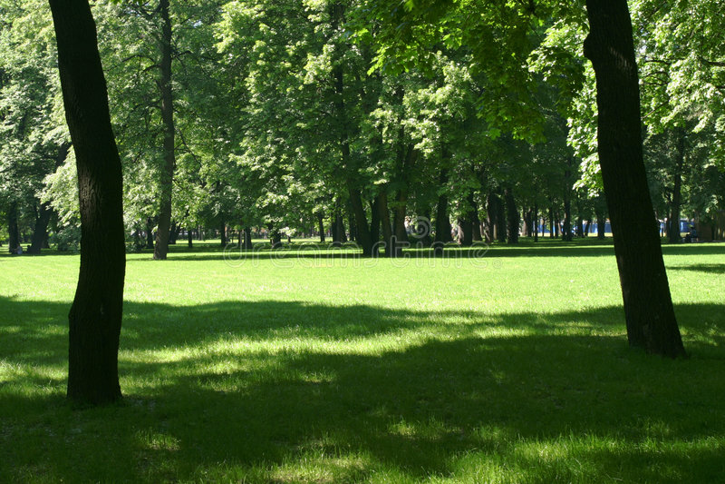公园 库存图片