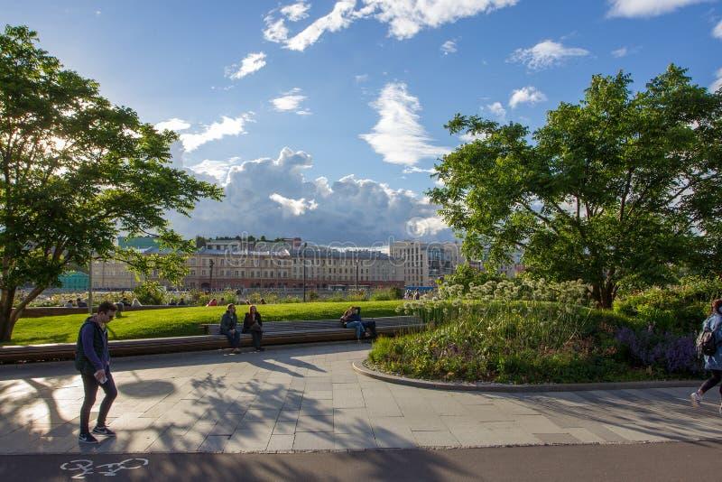 公园Muzeon,6月,萨尔维亚绽放 免版税库存图片