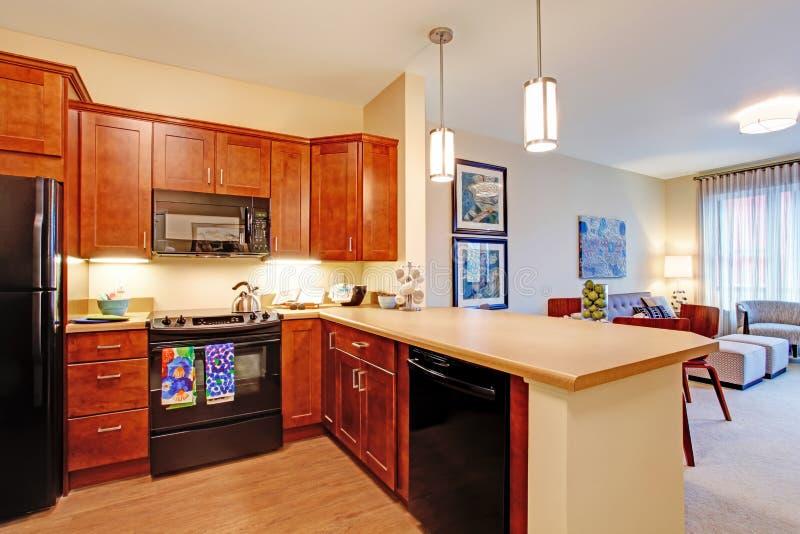 公寓内部现代 开放学制的楼层 免版税库存照片