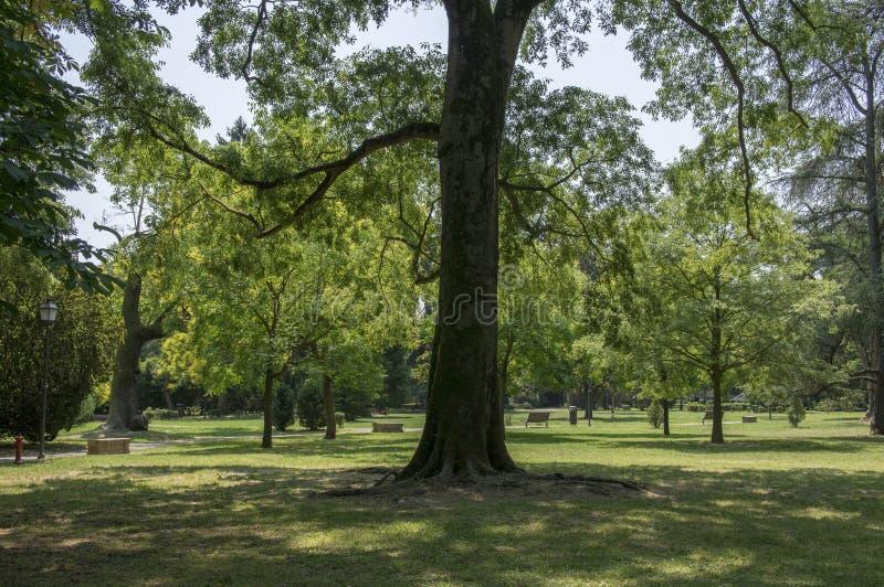 公开城市公园在费拉拉 免版税图库摄影