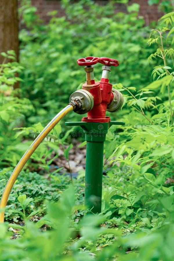 公开绿地和公园的专业灌溉系统 库存图片