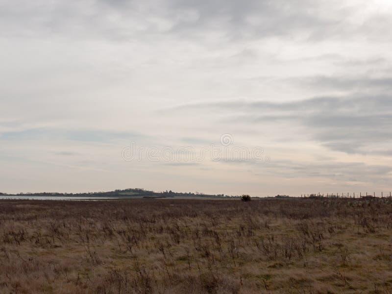公海与草的海岸平原在清楚前面天际的阴云密布 库存图片