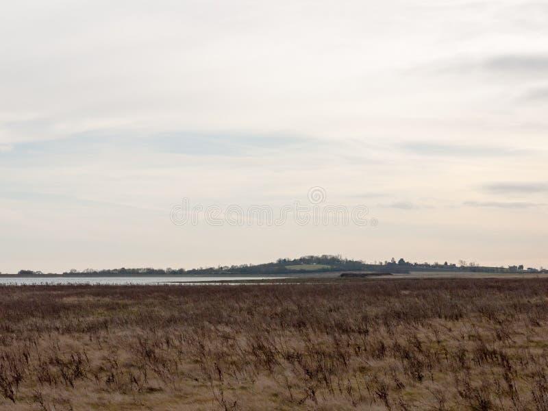公海与草的海岸平原在清楚前面天际的阴云密布 免版税图库摄影