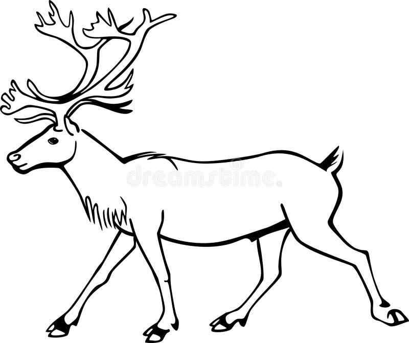 公牛北美驯鹿 库存例证