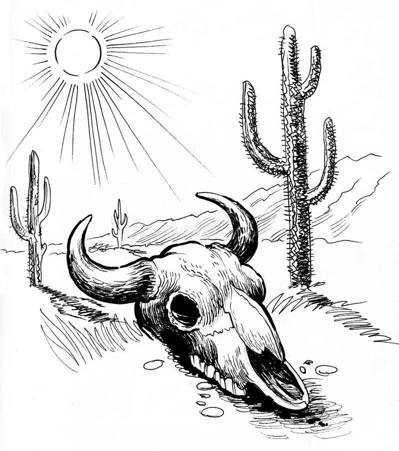 公牛头骨在沙漠 皇族释放例证