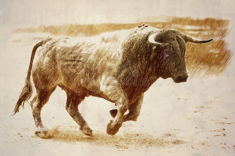公牛疾驰在斗牛的颜色桂香 库存例证
