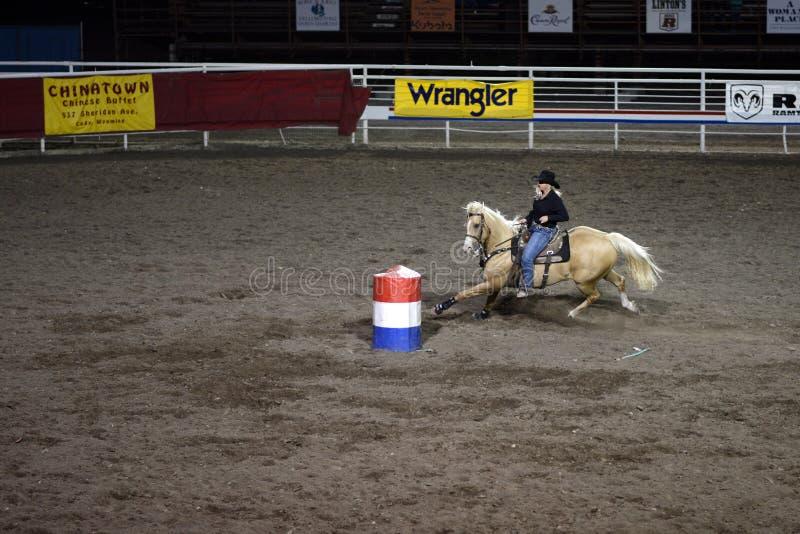 公牛骑马 库存图片