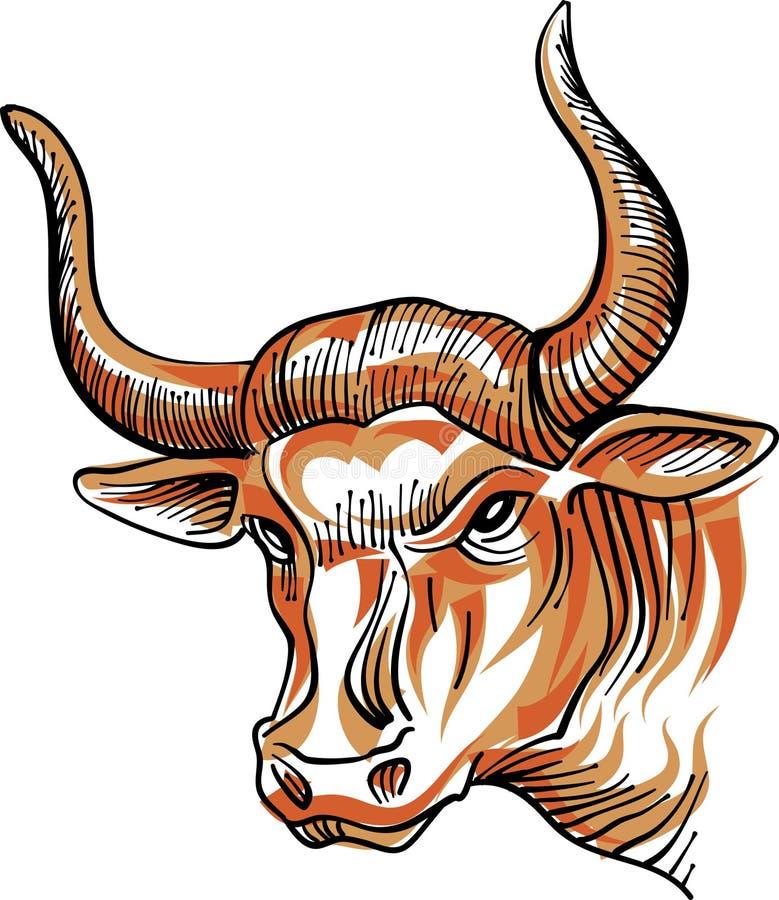 公牛头 向量例证
