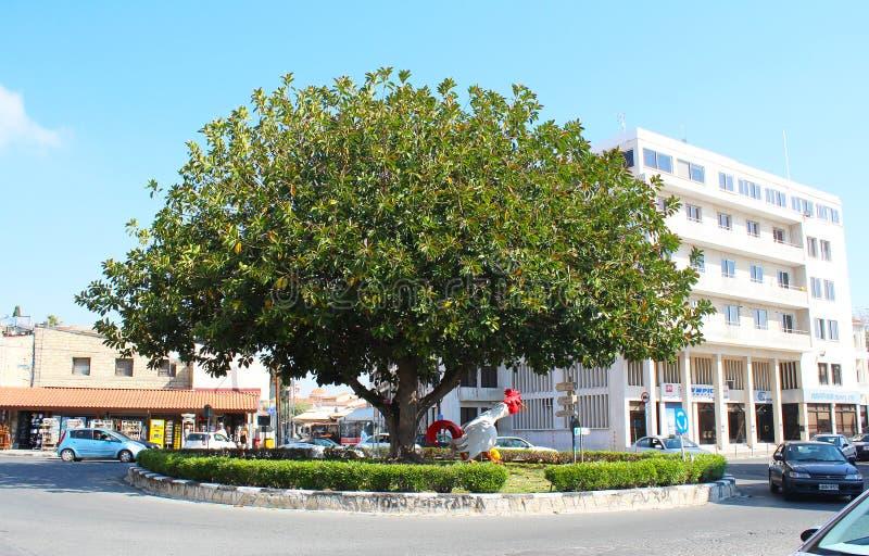 公鸡雕塑和非常老大树在利马索尔广场,塞浦路斯 免版税库存照片