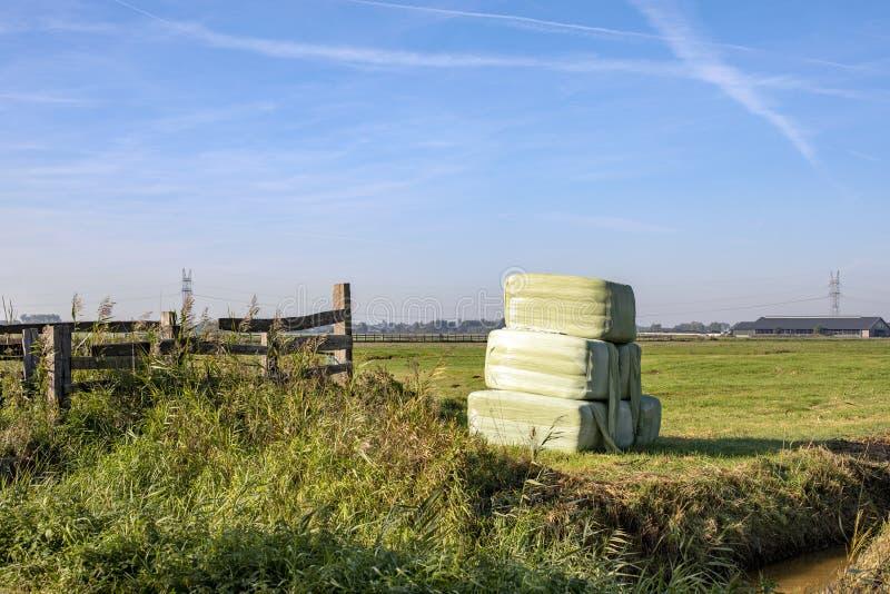 六个大包干草,青贮大包,包裹在风景堆积的浅绿色的塑料 免版税图库摄影