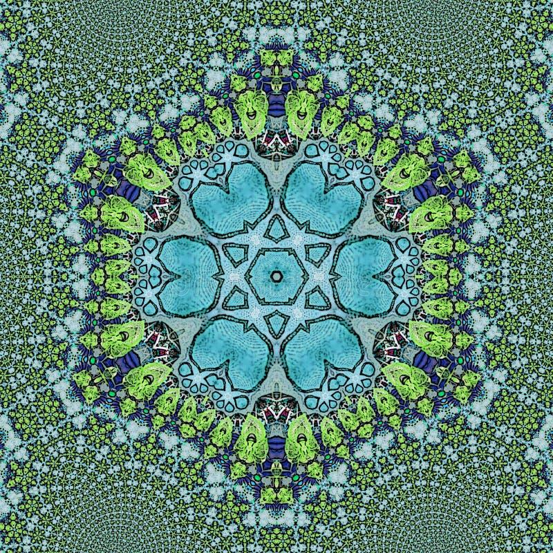 六角荧光的无刺指甲花坛场乱画的花 库存图片