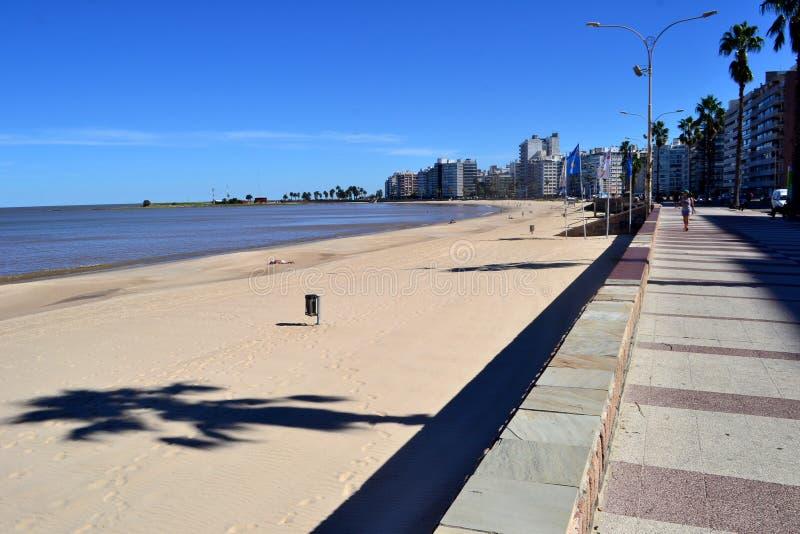 兰布拉de la playa pocitos 免版税图库摄影