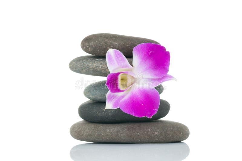 兰花和温泉石头 库存图片