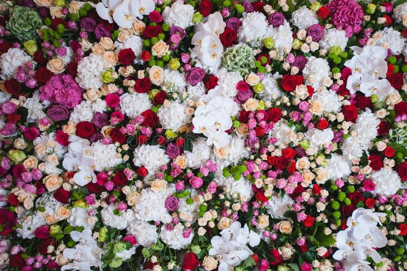 兰花和玫瑰的华美的花卉构成在白色,桃红色颜色 免版税库存照片