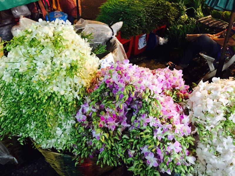 兰花开花在花市场上在曼谷 免版税图库摄影