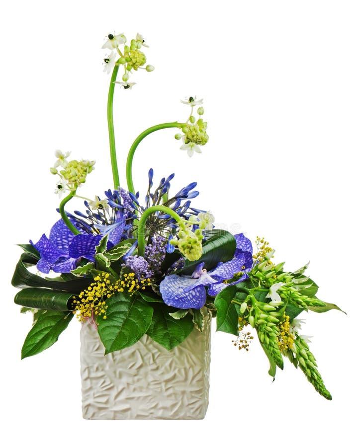 从兰花的花束和阿拉伯星开花(万年青arabi 免版税库存照片