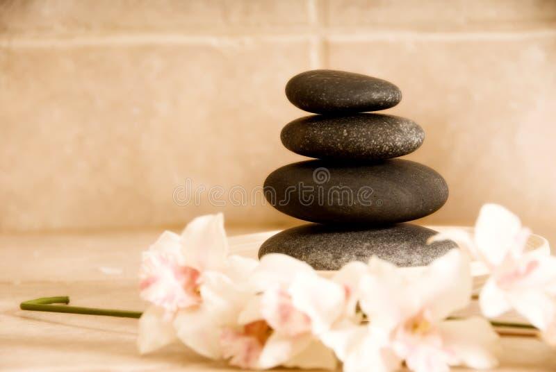 兰花石头 库存图片