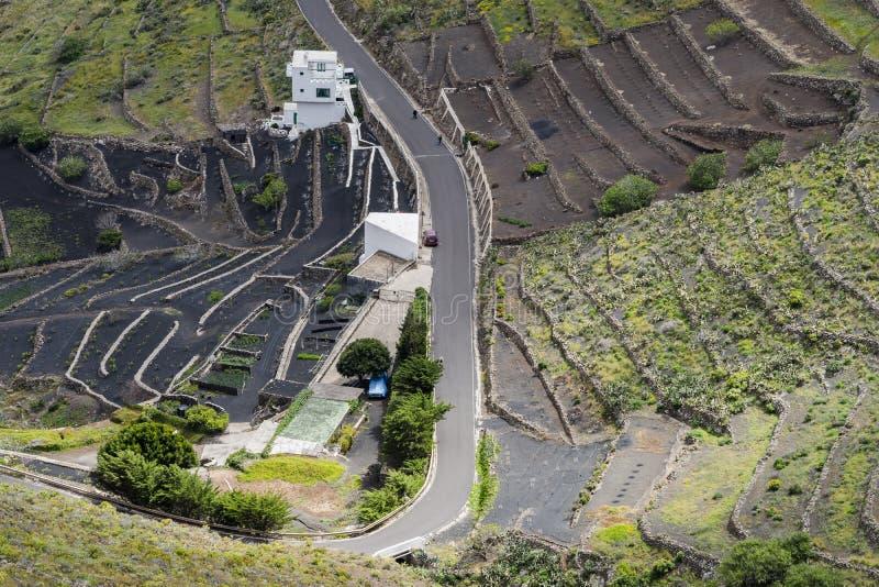 兰萨罗特岛风景 库存照片