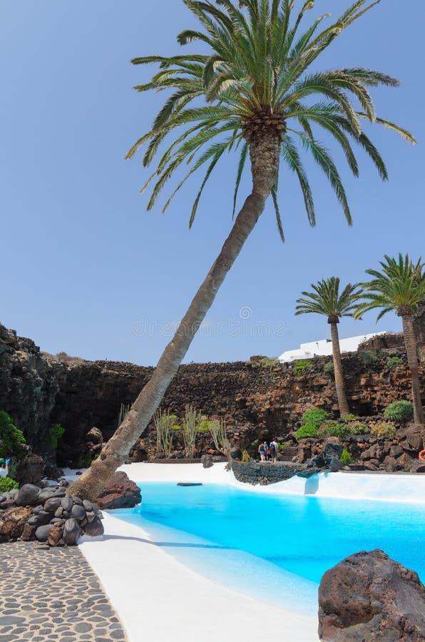 兰萨罗特岛,加那利群岛背景 免版税图库摄影