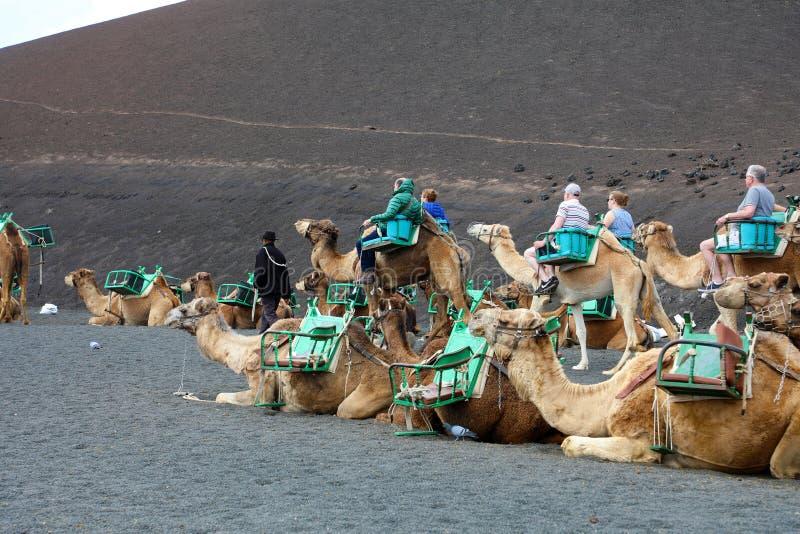 兰萨罗特岛,西班牙- 2018年4月20日:在火山的风景的不可能验明的旅游骑马骆驼在Timanfaya国家公园, Lanzarot 库存图片