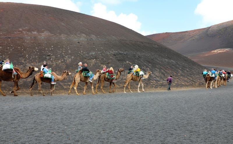 兰萨罗特岛,西班牙- 2018年4月20日:在火山的风景的旅游骑马骆驼在Timanfaya国家公园,兰萨罗特岛 库存图片