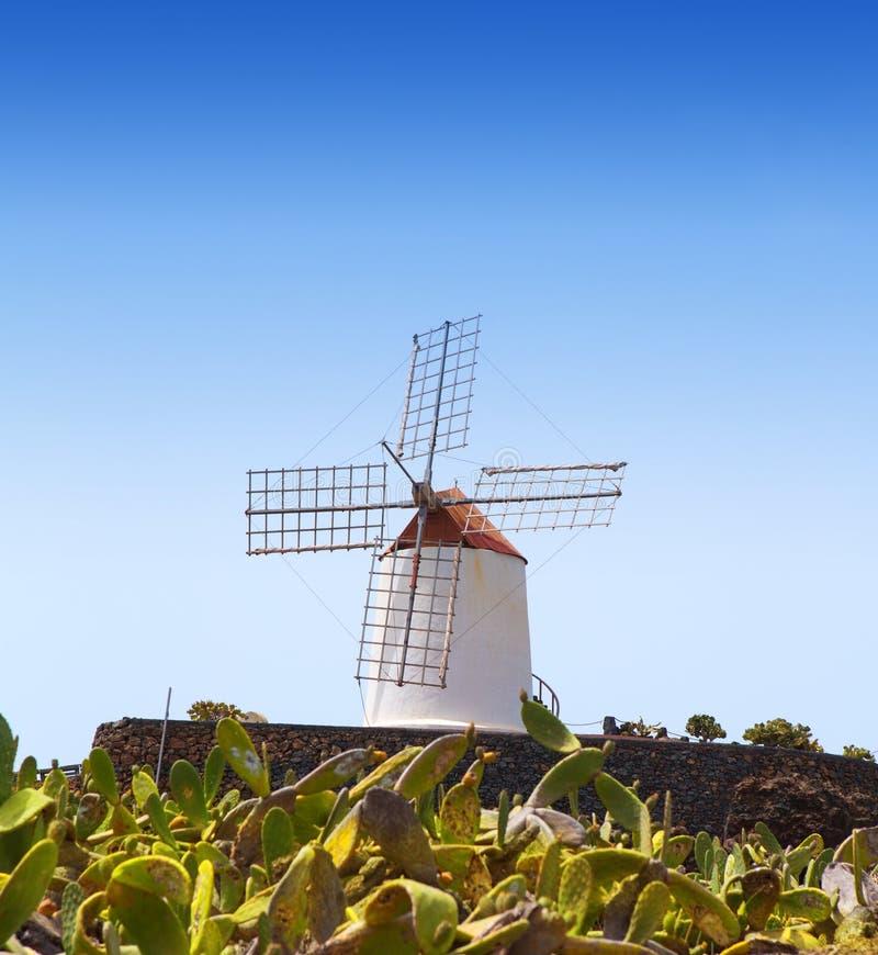 兰萨罗特岛Guatiza仙人掌庭院风车 免版税库存照片