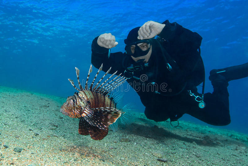 共同的蓑鱼(Pterois volitans)和轻潜水员 水下的p 免版税库存图片